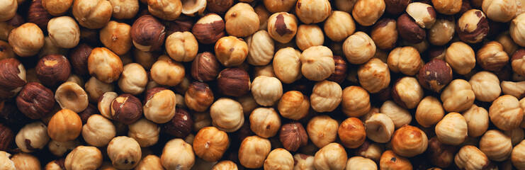 Peeled roasted hazelnut panorama.View from above. Wide.