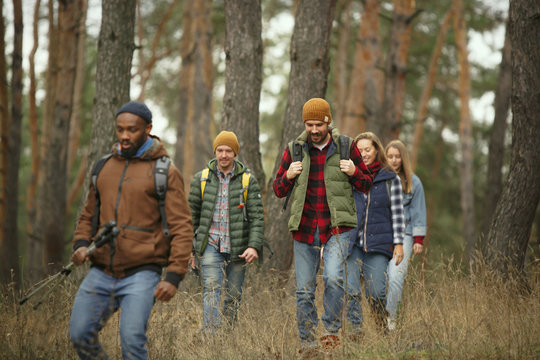 Group of friends on a camping or hiking trip in autumn day. Men and women with touristic backpacks going throught the forest, talking, laughting. Leisure activity, friendship, weekend.