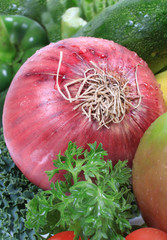 Fresh vegetable with red onion in focus
