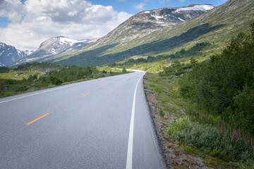 Norwegian road  in mountain landscape