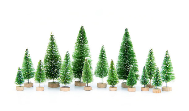 Group miniature set model winter pine tree with snow is props decoration for create atmosphere festival Christmas. isolated on white background.