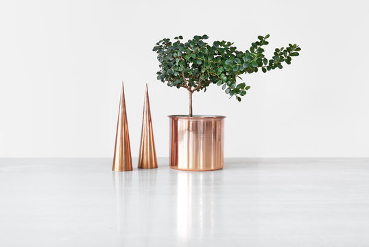 Copper cones and pot with Buxus tree