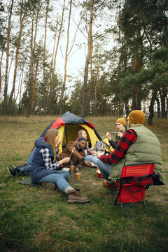 Group of friends on a camping or hiking trip in autumn day. Men and women with touristic backpacks having break in the forest, talking, laughting. Leisure activity, friendship, weekend. Eat and drink.