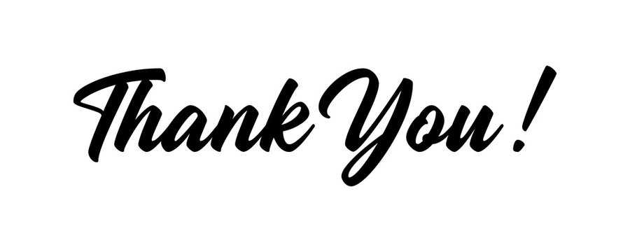 Thank You text hand drawn lettering calligraphic isolated on white background vector illustration