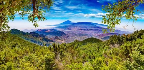 Deurstickers Canarische Eilanden Masca valley.Canary island.Tenerife.Spain.Scenic mountain landscape.Cactus,vegetation and sunset panorama in Tenerife