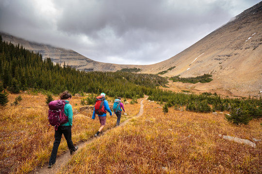 People hiking on trail in Glacier National Park