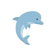 Isolated sea dolphin vector design