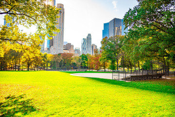 Fotorollo Gelb Central Park New York City