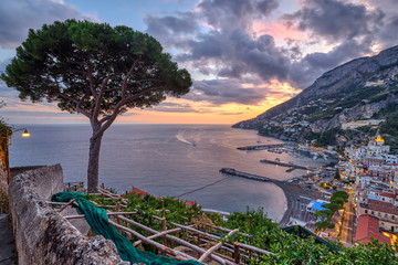 View of Amalfi in Italy at sunset with a lone pine tree