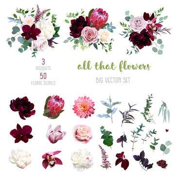 Dusty pink and creamy rose, coral dahlia, burgundy and white peony flowers
