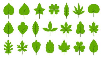 Green leaves flat Bio Organic Eco leaf icon set