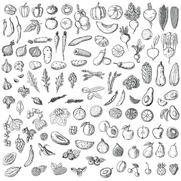 Set of vegetables, fruits and berries. Vector cartoon illustration. Isolated objects on a white background. Hand-drawn style.