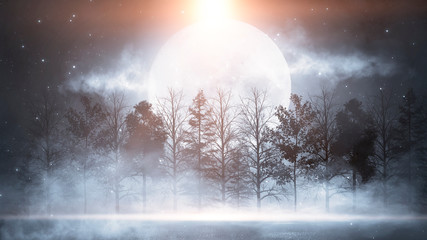 Winter abstract landscape. Sunlight in the winter forest. Snowy nature scene. Cold weather, frosty day. Fototapete