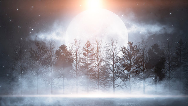 Winter abstract landscape. Sunlight in the winter forest. Snowy nature scene. Cold weather, frosty day.