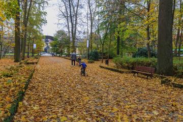 Autumn in Spa Park,Kudowa Zdroj, Poland