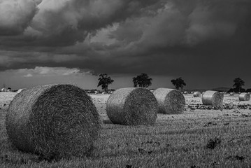 Bales Of Straw In A Thundery Atmosphere