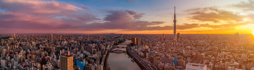 In de dag Helicopter Panorama of Tokyo skyline at dawn, Japan