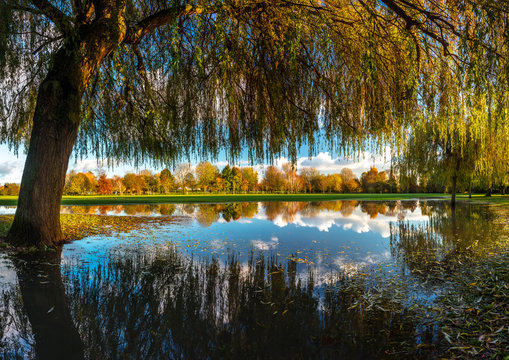 Still reflections of Trees in Flood water at Stratford Upon Avon