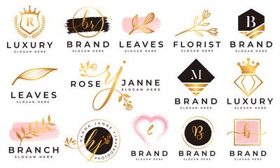Feminine logo collections template premium vector