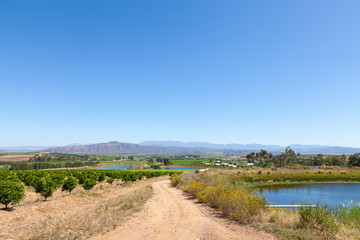 Robertson Wine Valley, Route 62, Western Cape Winelands, South Africa in spring with vineyards and citrus orchards