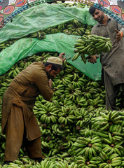 Laborers offload bananas from a truck at a wholesale fruit market in Peshawar,