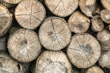 Pile of dry round firewood for a fireplace