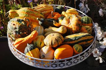Herbst Dekoration mit Kürbissen