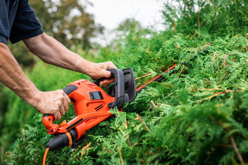 Foto op Plexiglas Tuin Gardener cutting bush by hedge trimmer in garden