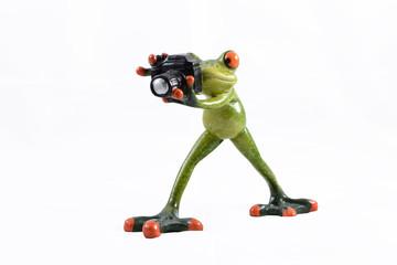 glasfigur frosch - fotograf