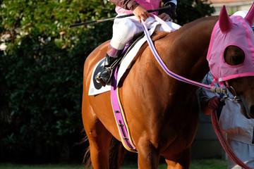 Foto op Aluminium Paardrijden the scene of horse race