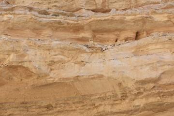 sandy rock texture