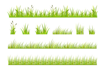 Vector illustration of green grass, natural grass elements isolated white background for templates