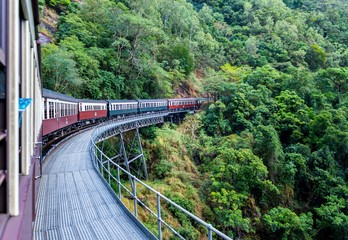 Beautiful shot of Kuranda scenic railway surrounded by green tree forests in Australia Wall mural