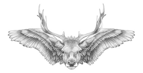 Portrait of Deer with wings. Hand drawn illustration.
