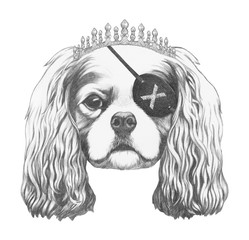 Portrait of Cavalier King Charles Spaniel with diadem and eye patch. Hand-drawn illustration.
