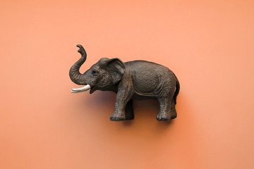 Toy elephant on orange background