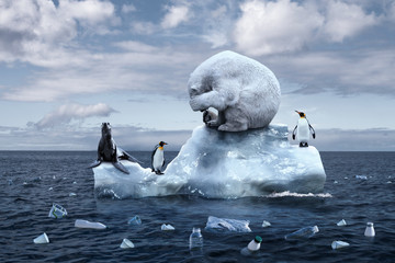 Papiers peints Ours Blanc polar bear sits on a melting glacier
