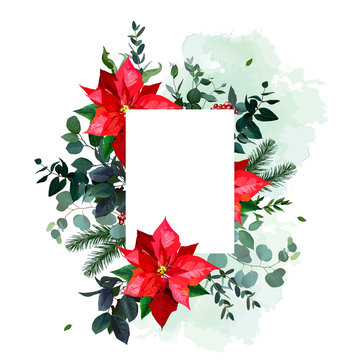 Red poinsettia flowers, christmas greenery, emerald eucalyptus