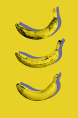 Photography minimal art collage of ugly ripe fruit bananas on yellow color background in trendy...