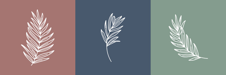 Set of tropical leaves. Outline Palm leaf and Olive Branch In a Modern Minimalist Style. Vector Illustration. For printing on t-shirt, Web Design, beauty Salons, Posters, creating a logo and other