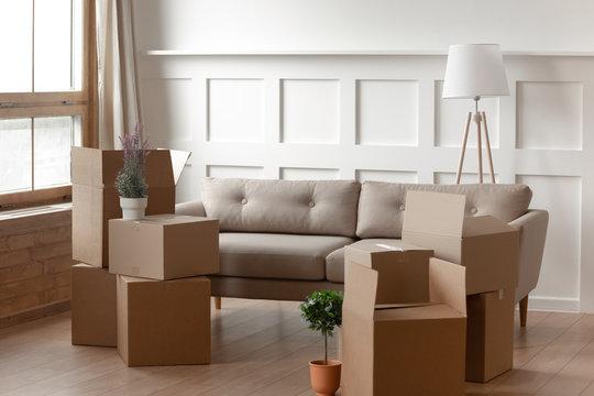 Cardboard boxes on cozy modern light living room