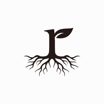 Roots letter R logo design inspiration - vector