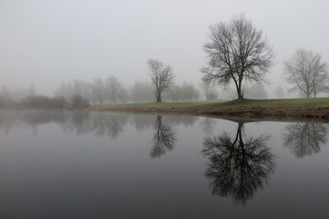 Fotorollo Grau Nebellandschaft im November - November misty landscape