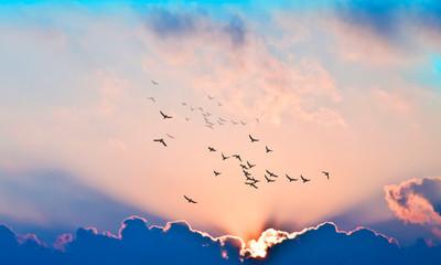 puesta de sol con rayos de luz entre las nubes Fotobehang