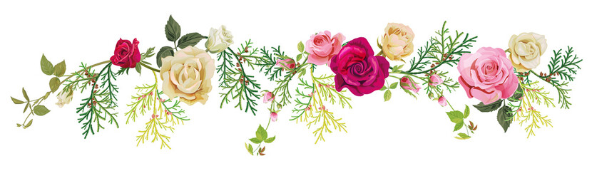 Panoramic view: red, white, pink roses, thuja (arborvitae). Horizontal border for Christmas: flowers, buds, leaves, green twigs, cones on white background, digital draw, watercolor style, vector Wall mural