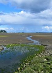 Estuary landscape, low tide with rain clouds overhead, Courtenay Vancouver Island, BC Canada