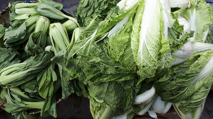 Chinese cabbage nappa napa bok choy pile inside basket fresh from farm green white color