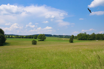 "Countryside of the health resort ""Bad Steben"" upper Franconia - Bavaria, Germany"