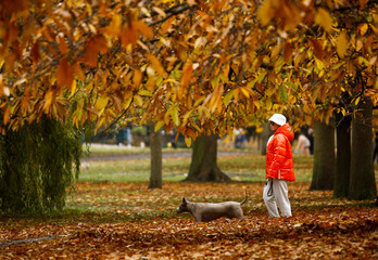 People walk through Hyde Park during autumnal weather in London