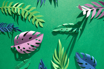 tropical leaves cut from paper on green background.